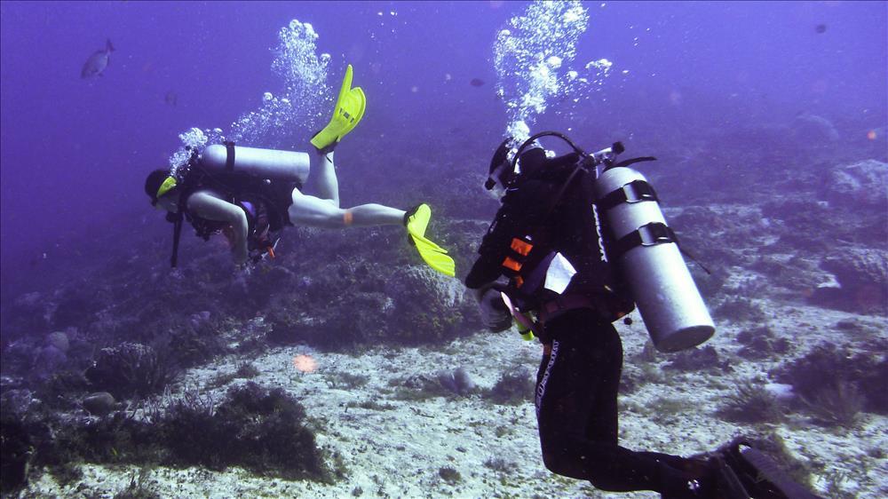 Diving for beginners in Belek