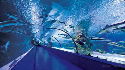 Antalya Aquarium from Seric